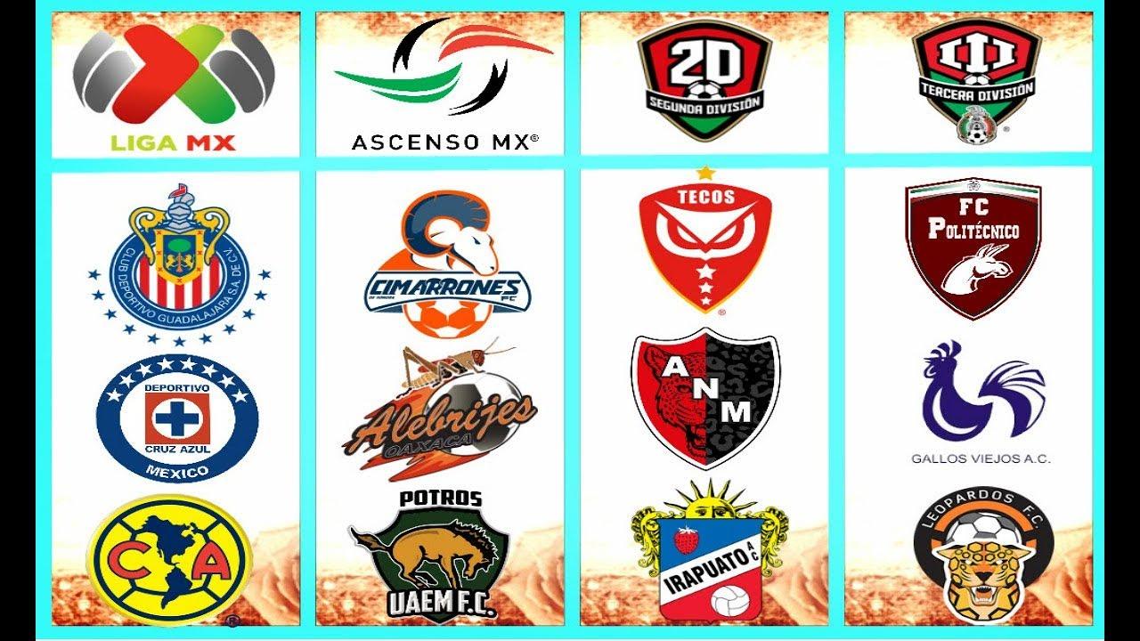 Todas las ligas y equipos profesionales del f tbol for Equipos de cocina de segunda