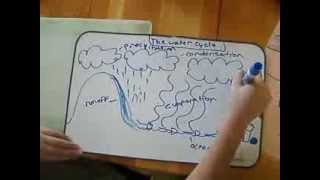 The Water Cycle - Madeline Mitchell
