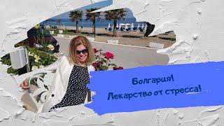 Купить недвижимости в Болгарии. Личный опыт(