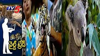 Illegal Wildlife Trade | Centre Plans to Curb Online Sale of Rare Animals | TV5 News