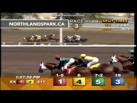 Capitalism: 3&4yo Sale Stakes 50k at Northlands Park