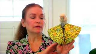 Bird Care : How to Treat a Sick Parrot