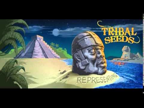Tribal Seeds - Blood Clot (feat. Don Carlos)