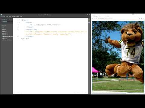 CMPS 294 - 03 - Intro To HTML - Part2