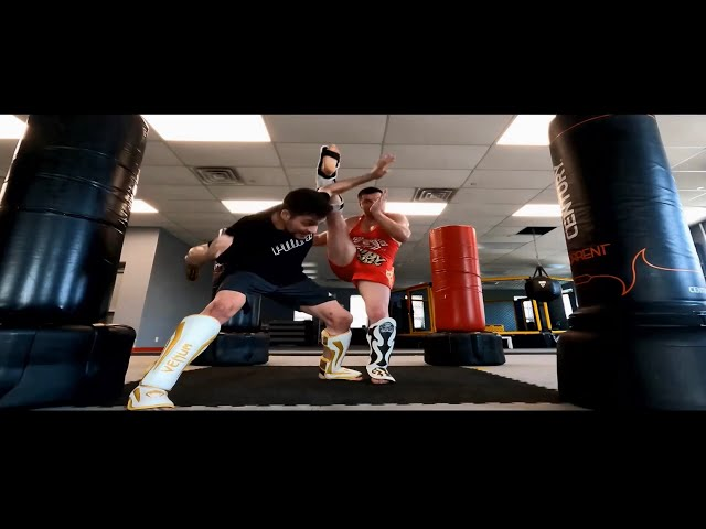 Martial Arts Motivation Alex Lee Training System SMA