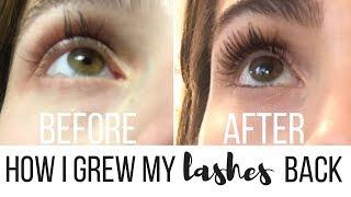How I Grew My Eyelashes Back After Eyelash Extensions