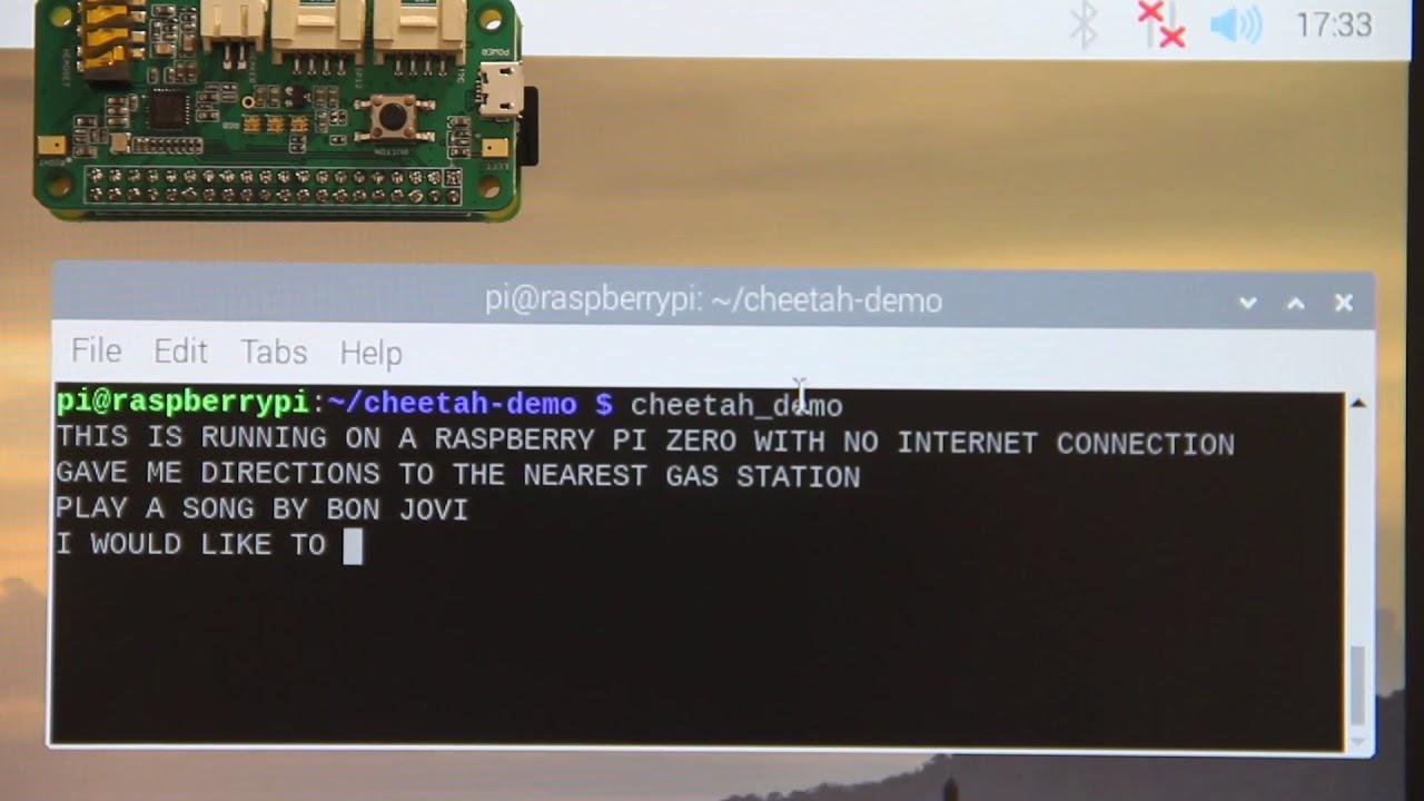 Offline & Real-Time Speech-to-Text Running on Raspberry Pi Zero