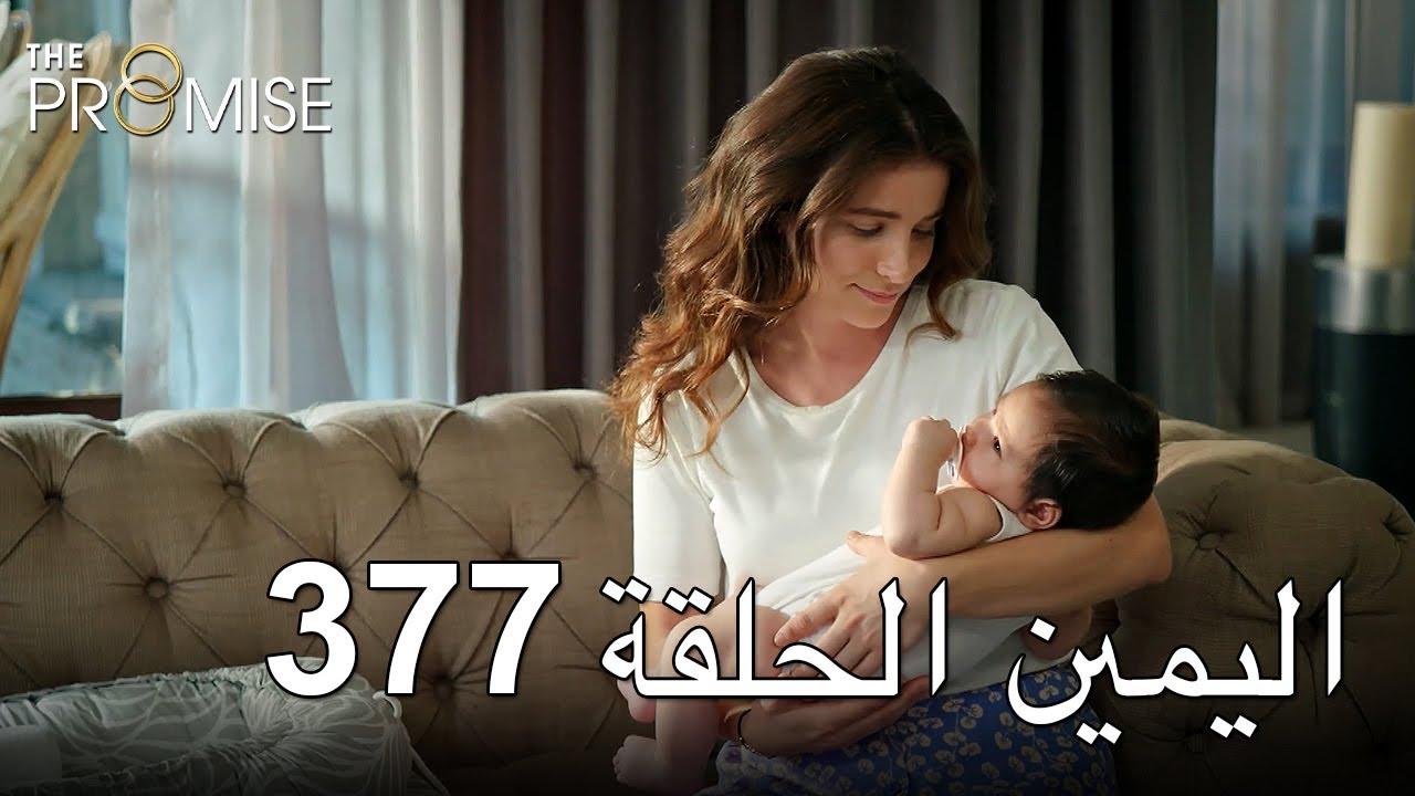 Download The Promise Episode 377 (Arabic Subtitle) | اليمين الحلقة 377