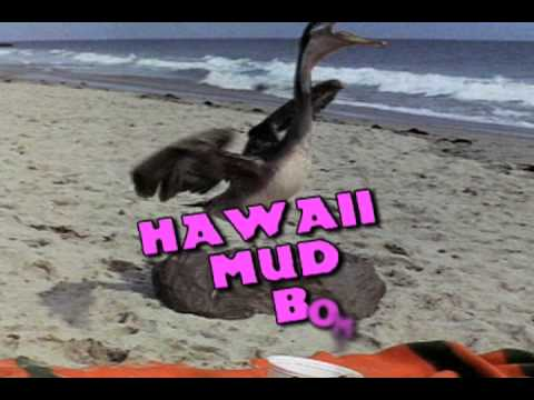 Los Straitjackets / Hawaii Mud Bombers - 11/7