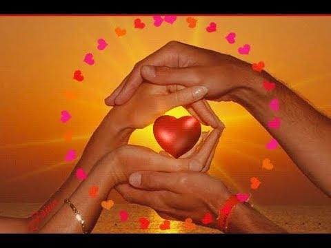 Стихи о любви. Эдуард Асадов. Цитаты Омара Хайяма  Язык цветов.