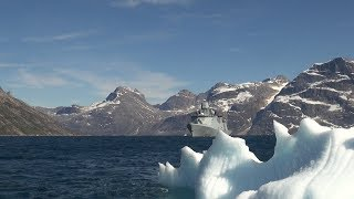 Willemoes i Arktis
