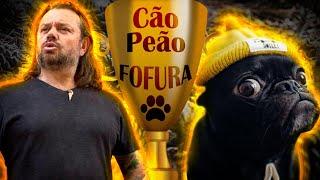 PUG, O CAMPEÃO DA FOFURA!   RICHARD RASMUSSEN