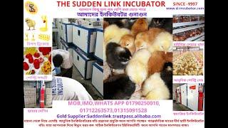 01712263573 300 egg new model lab incubators