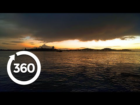 Set Foot On a Black Volcanic Beach | Auckland, New Zealand 360 VR Video | Discovery TRVLR