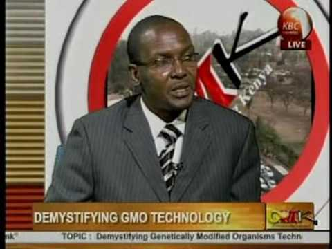 Julius Nyabicha   GMO & Agricultural production in Africa