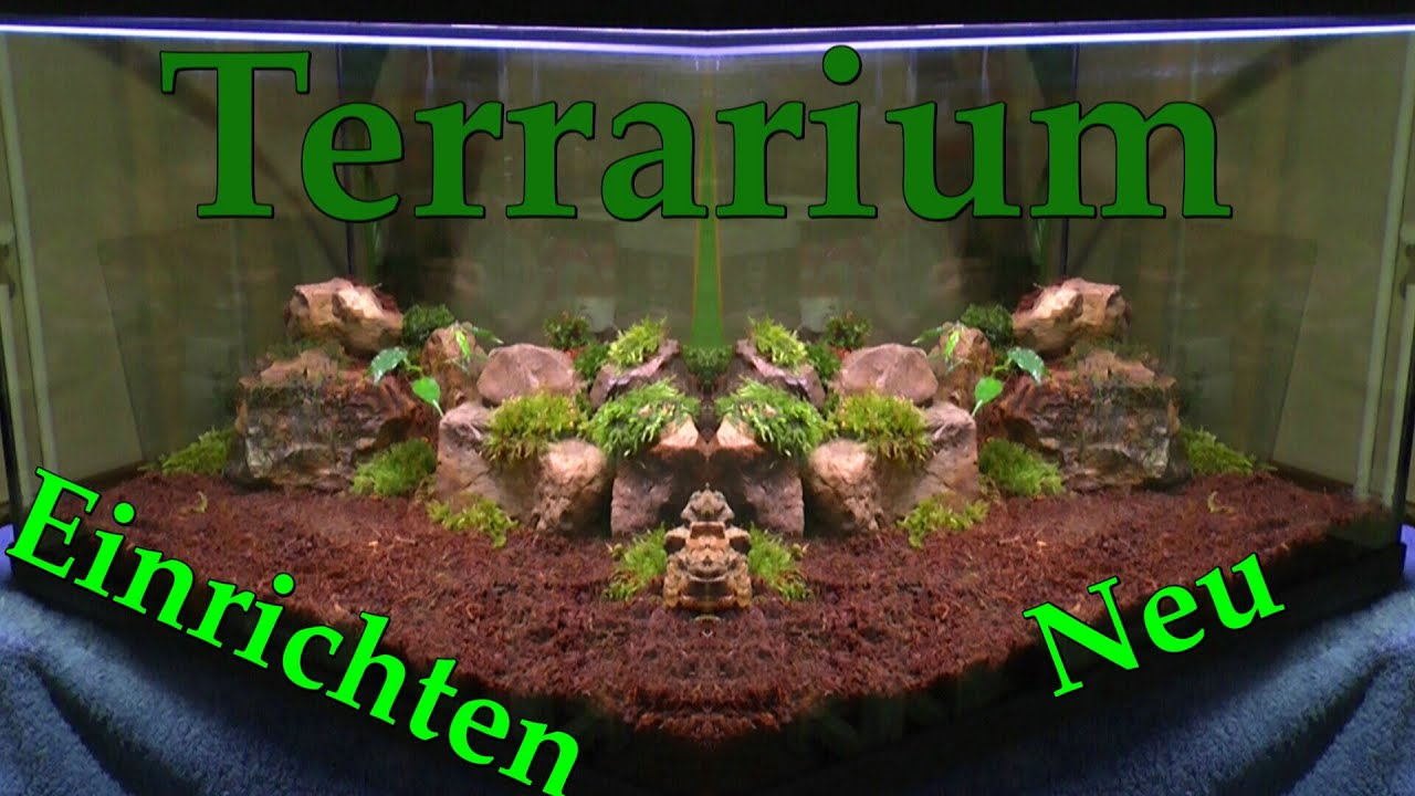 ein ewiges oder zeitweise terrarium f r pflanzen teil 2 einrichten youtube. Black Bedroom Furniture Sets. Home Design Ideas