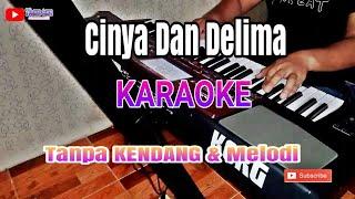 Download lagu CINTA DAN DELIMA KARAOKE TANPA KENDANG MP3