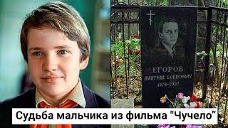 Дмитрий Егоров. Трагическая судьба мальчика из фильма