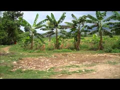 Danae Cappelletto - Head Cam Mission to Haiti #1