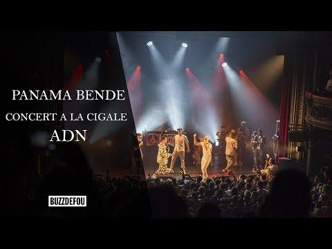 PANAMA BENDE | ADN | Concert à Cigale