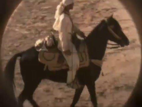 Classic Horse Stories: Hidalgo