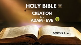 Holy Bible : Creation + Adam and Eve (Gen 1 - 4)