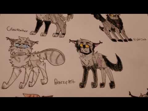 Sandstorm Redesign + new and old designs! Warrior Cats , YouTube