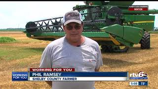 Hoosier farmers worried about looming trade war with China