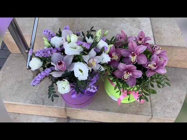 Орхидеи в шляпных коробках