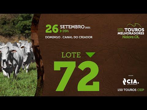 LOTE 72 - LEILÃO VIRTUAL DE TOUROS 2021 NELORE OL - CEIP