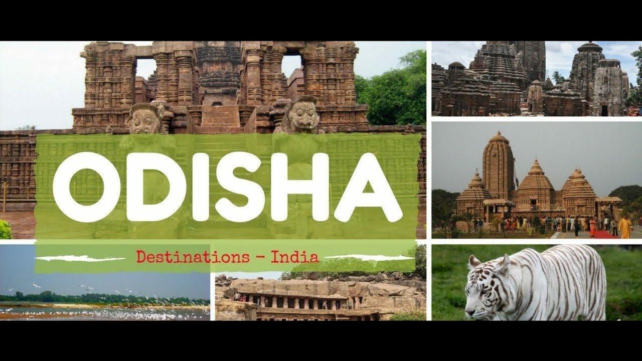 Orissa Short Video Clips | Bhubaneswar | Paradeep | Konark Temple.