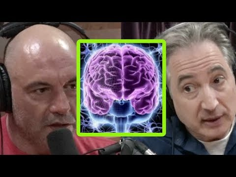 Brian Greene and Joe Rogan: Consciousness and Psychedelics