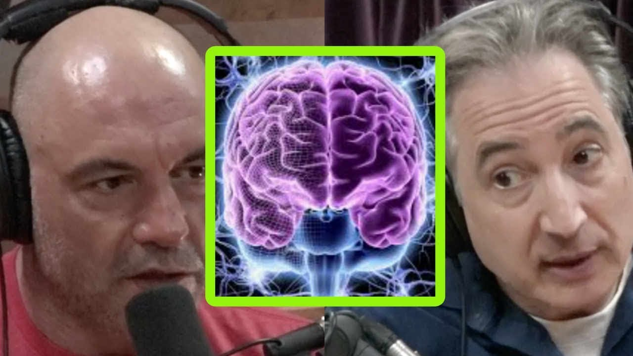 Download Brian Greene and Joe Rogan: Consciousness and Psychedelics
