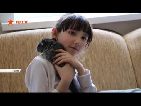 Як у Львові 9-річна школярка доглядала за лежачою матір'ю та безногою бабусею