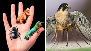 12 Animals That Can Do Unusual Things