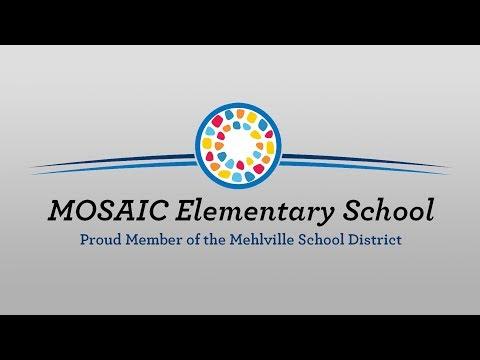 MOSAIC School Profile