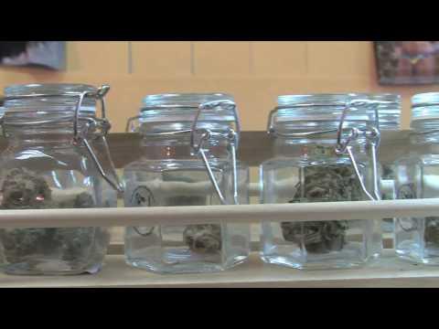 Pierre Werner, owner of DrReefer.com, talks about proposed medical marijuana ordinance
