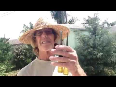 Woody Logic Surf - How to make ribs for the 7' wood surfboard.