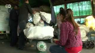 Biomass Briquets from Cambodia | Global 3000