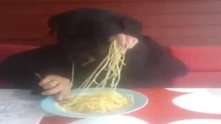 Собака ест, или человек кормит?