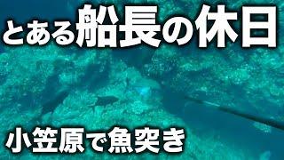 【小笠原で魚突き】弟島の鹿浜でカッポレを突く!とある船長の休日
