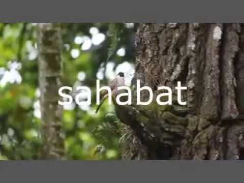 Sahabat - Gigi (Music Video Cover)