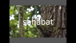Sahabat - Gigi (Music Video Cover)