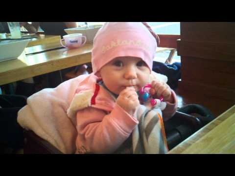 Lily's 1st restaurant high chair