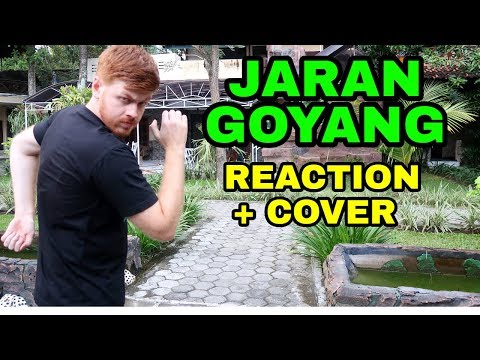 JARAN GOYANG RAJA DANGDUT AMERIKA (Reaction + Cover)