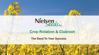 Crop Rotation & Clubroot