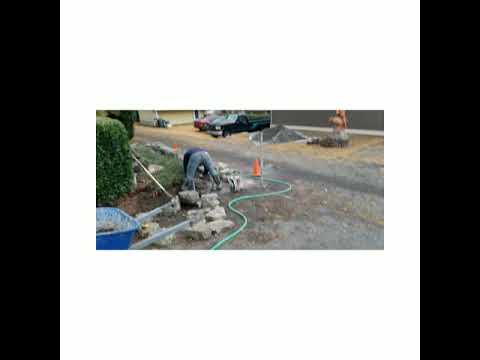 Lawn care services Bellingham aeration thaching lawn  services