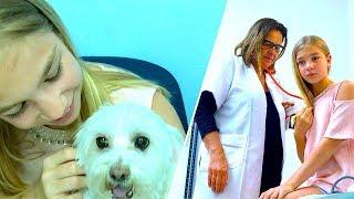 Я в БОЛЬНИЦЕ, что случилось? Говорящая собака помогает доктору