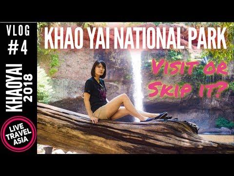 Khao Yai National Park Worth the Visit? #1 Attraction in Khao Yai Thailand 4K Travel Vlog