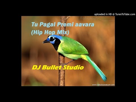 Tu-Pagal-Premi-aavara-(Hip Hop Mix)